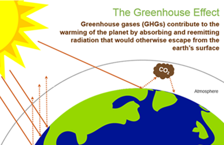 Greenhouse Gas Emissions and Rice Farming