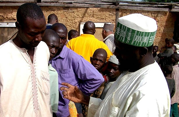 Farmers in Nigeria learn about aflatoxins and their negative impact
